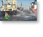 Direct Democracy Video: Anti-whaling activists rammed by Japanese ships - again!