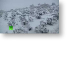 Direct Democracy Video: Severe snow storm hits Middle East - obviously just part of the planets natural cycle [NOT!]